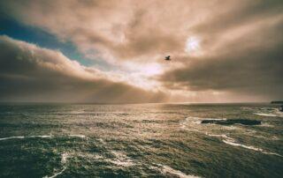 Taube überm Meer mit Licht durch Wolken